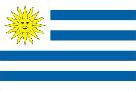 Uruguay als Fanfahne