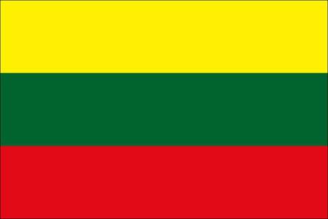 Litauen als Fanfahne
