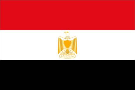 Aegypten als Fanfahne