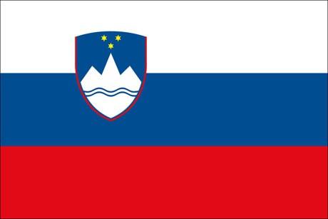 Slowenien als Fanfahne