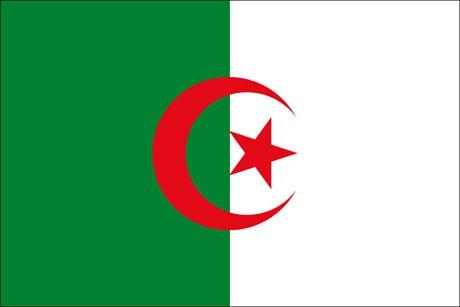 Algerien als Fanfahne