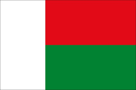 Madagaskar als Fanfahne