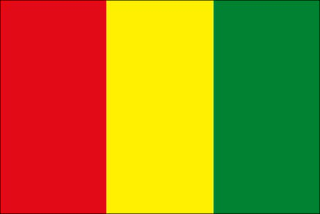 Guinea als Fanfahne