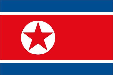 Nordkorea als Fanfahne