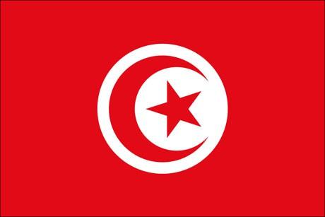 Tunesien als Fanfahne