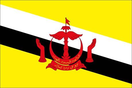 Brunei als Fanfahne