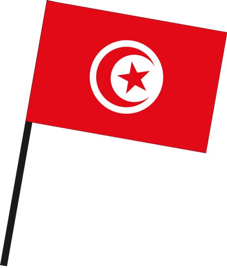 Tunesien als Stockfahne