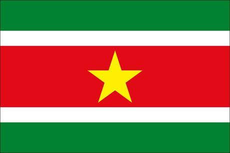 Suriname als Fanfahne