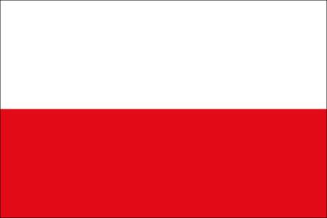 Polen als Fanfahne