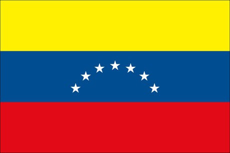 Venezuela als Fanfahne