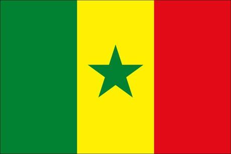 Senegal als Fanfahne