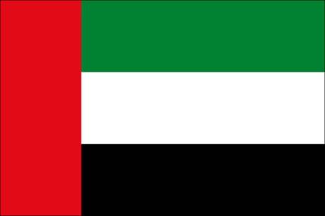 Vereinigte Arabische Emirate als Fanfahne