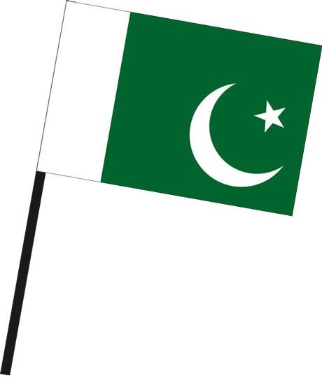 Pakistan als Stockfahne