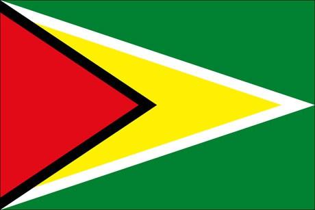 Guyana als Fanfahne
