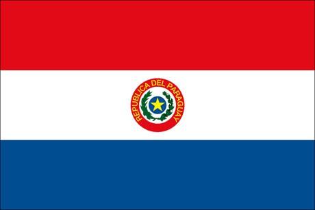Paraguay als Fanfahne