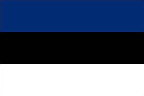 Estland als Fanfahne