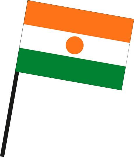 Niger als Stockfahne