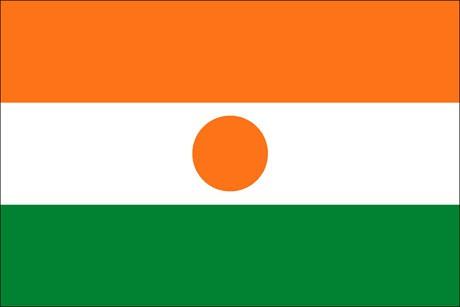 Niger als Fanfahne
