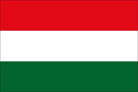 Ungarn als Fanfahne